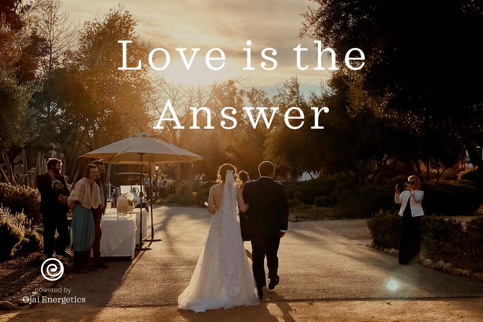 Will Kleidon's Manifesto: Love Is The Answer
