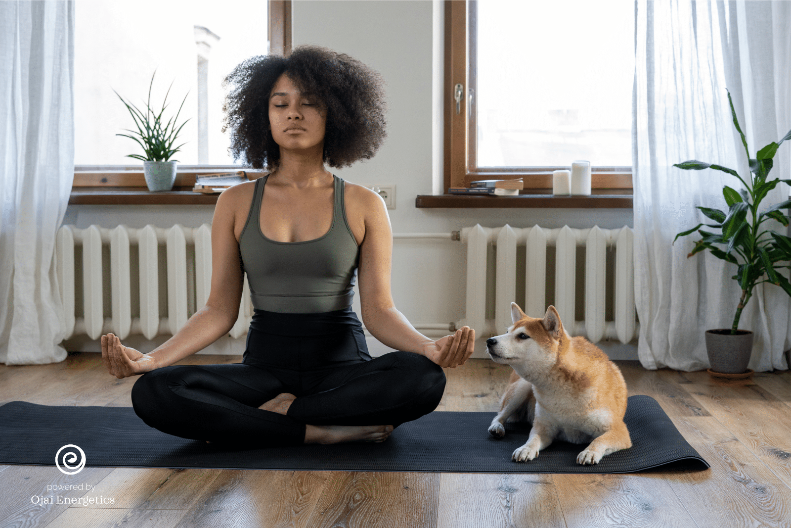 Water-Soluble CBD And Yoga, The Perfect Combination